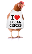 local_chicks